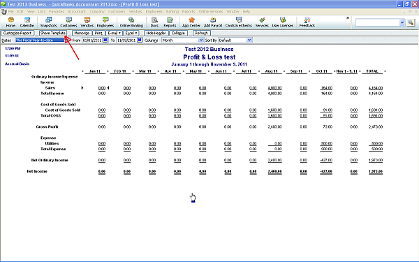 QuickBooks Report Share Template